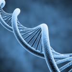 The role of DNA in emotional healing