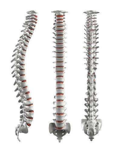 body electronics intensive healing course