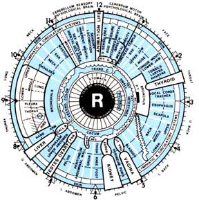 Iridology, Ego and Egregores