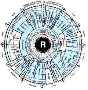 Iris Chart - Aziz Shamanism