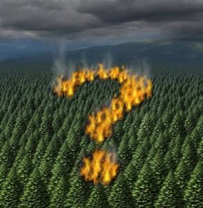 Deforestation producing climate change