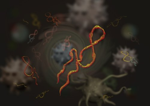 Virus Protection & the Ebola Scare