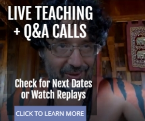 Live Q&A Calls