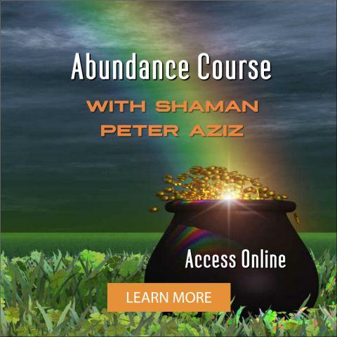 Abundance Course